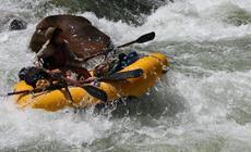 Hyside-rafts, Welfelt custom raft frames